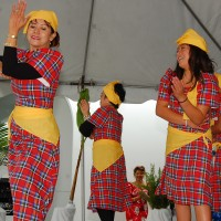 Oceanside Library To Host Filipino-American Cultural Celebration