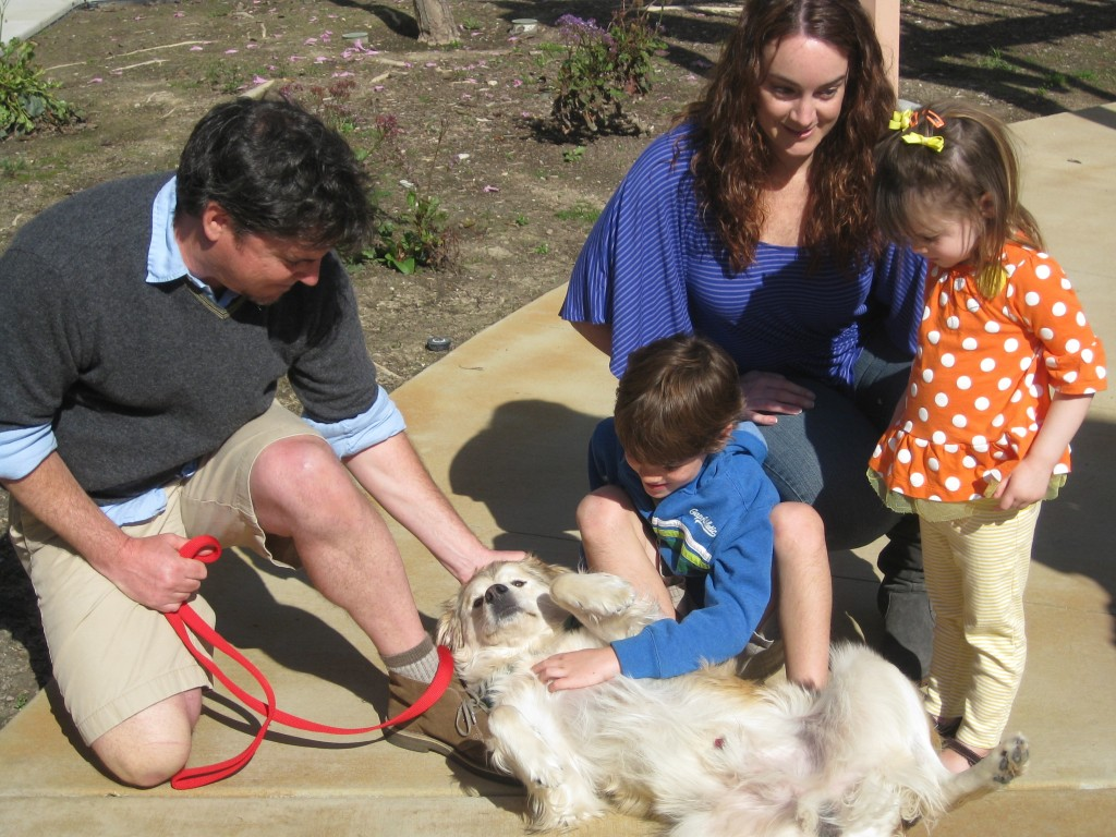 Chance the dog finds new home