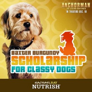 Anchorman 2 Star Baxter Burgundy Selects San Diego Humane Society For Scholarship For Classy Dogs