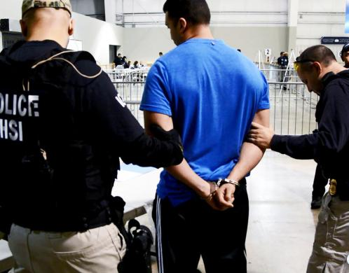 Operation Bullfighter nets 19 arrests for drug trafficking and money laundering