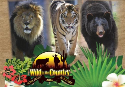 Lions Tigers And Bears To Hold Fundraiser This Saturday