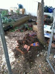 Escondido Police Officers Donate Money To Vandalized School Garden