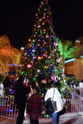 Oceanside Kicks Off The Holidays With Tree Lighting Ceremony