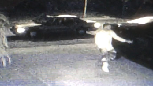 Authorities Seek Identity Of Car Burglar