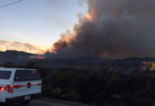 Cristianitos Fire Burns Over 700 Acres On Camp Pendleton