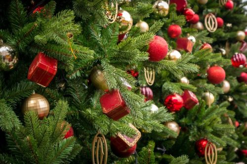 San Diego Launches Christmas Tree Recycling Program