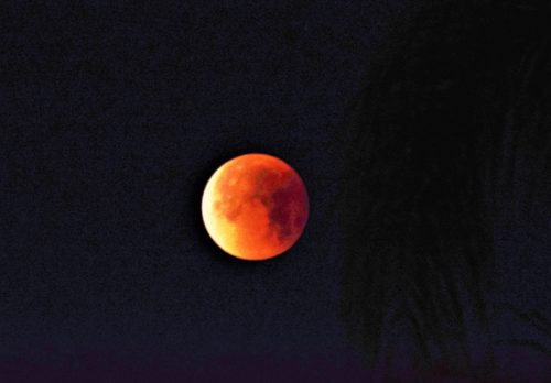 Rare Supermoon, Blood Moon And Lunar Eclipse Create Celestial Show