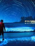 Legoland Sea Life Aquarium Adds Two New Exhibits