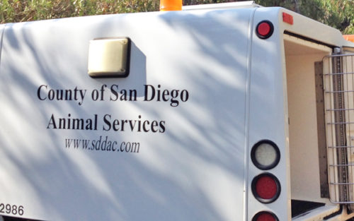 County Animal Services To Transfer Operations To Six Cities