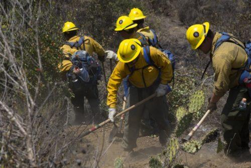 Camp Pendleton Fires Burn More Than 1,600 Acres Of Base